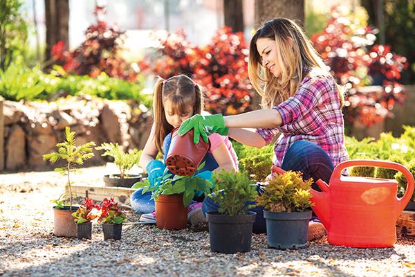 jardinpassion