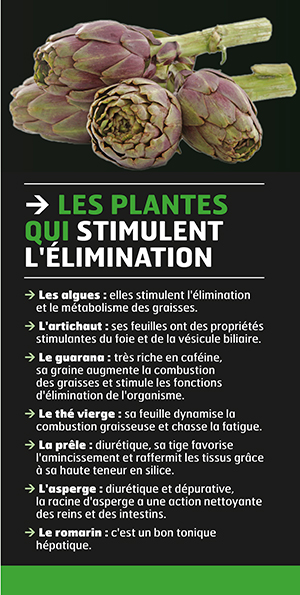 stimulation-plantes